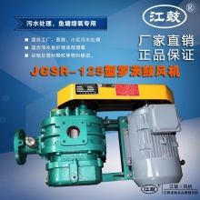 十大电竞游戏综合排名JGSR-125型